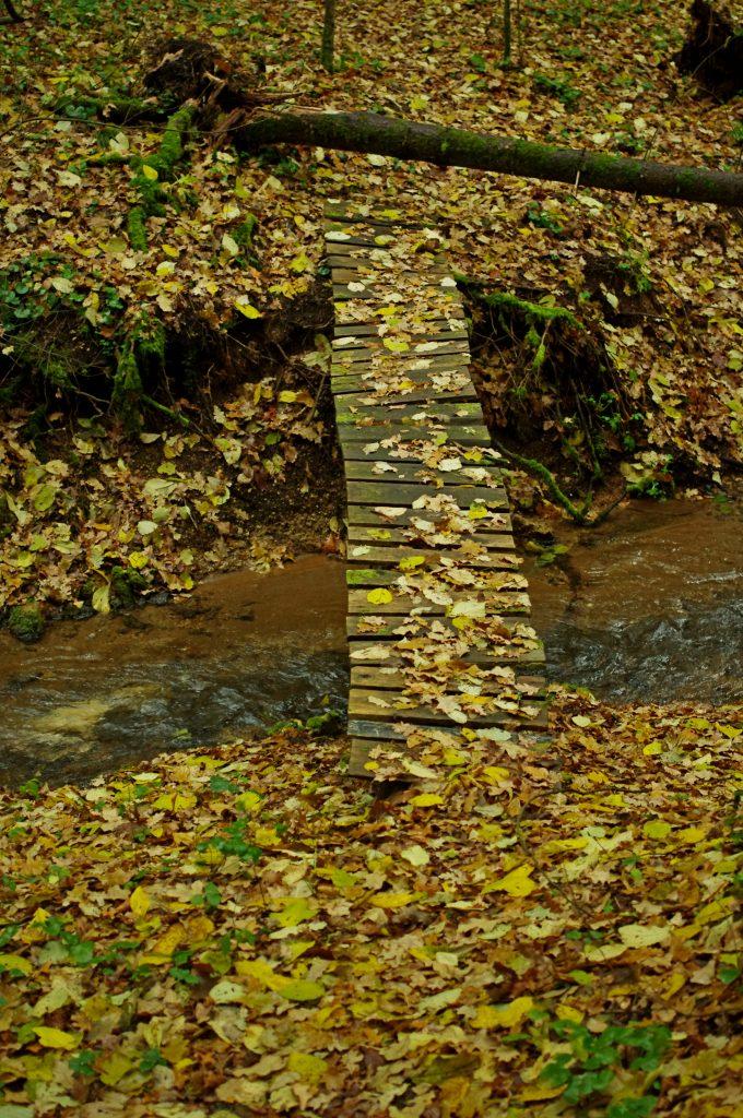 Ruduo virš upės