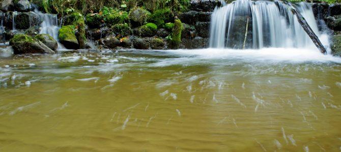 Bražuolės upelis