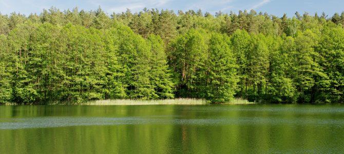 Ežerų šlaitais (Aukštadvario RP)