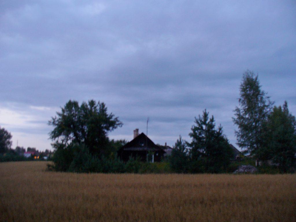 Paskutiniai namai