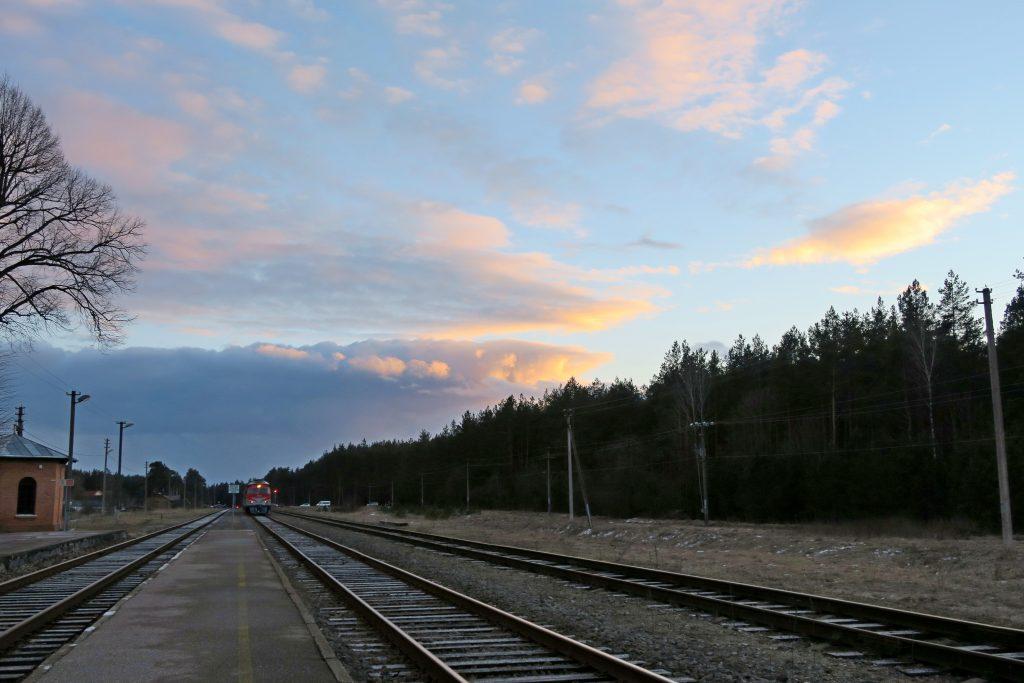 Traukinys namo